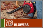 Top-Rated & Best-Selling Gas Leaf Blowers