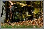 How to Pick the Perfect Electric Leaf Blower